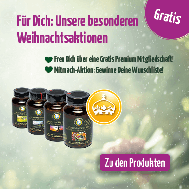 https://www.regenbogenkreis.de/adventsaktion/