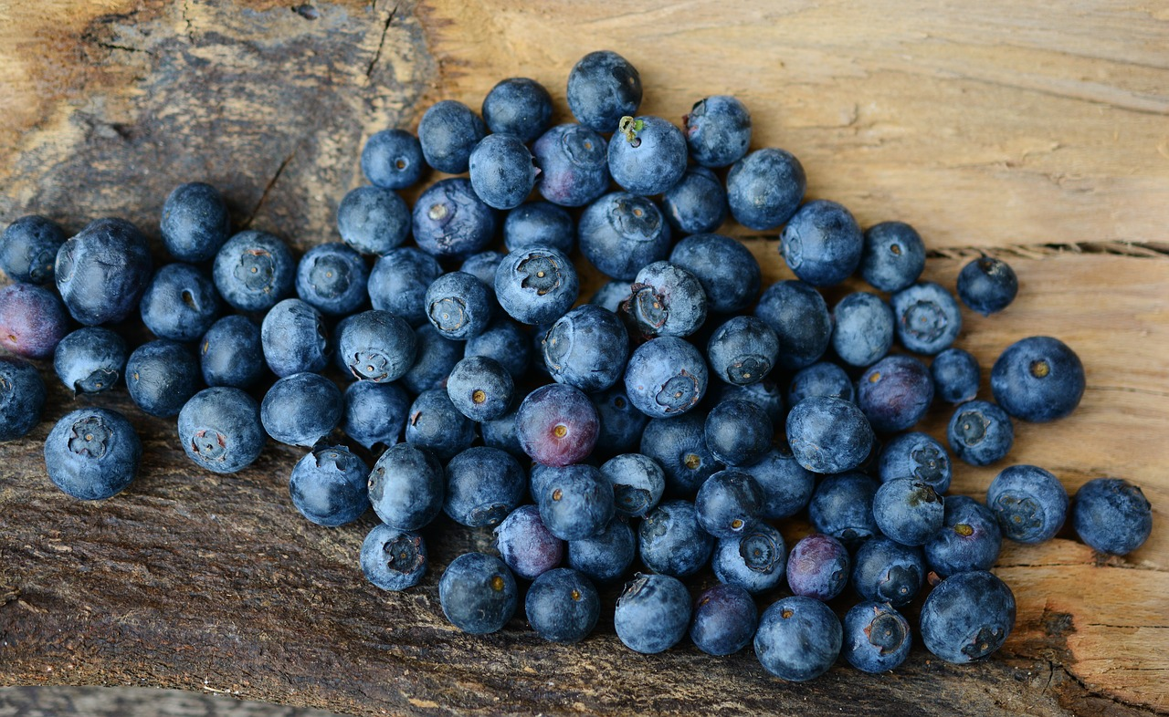 blueberries-2270379_1280